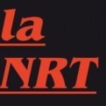 Lu dans la Nouvelle revue du travail (NRT)